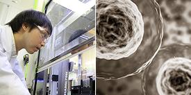 Chitose Biologics Corp. image